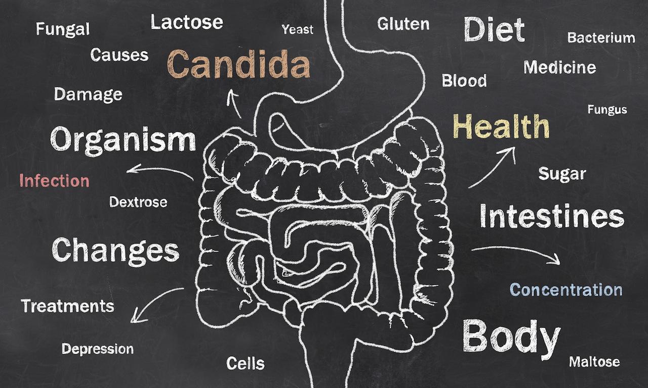 Candida dieet